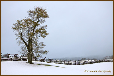 January 22, 2012. Bloody Lane. Antietam Battlefield. Sharpsburg, MD
