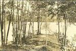 Ashfield Great Pond