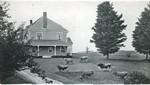 Ashfield Wauban Farms