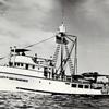 City Of San Francisco,Bulit 1931 Genoa Boatworks San Francisco,For Tom Cresci and Nick Cola,Nickola Colla,Sea Trials,Bay,