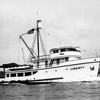 Liberty,Built 1948 Puget Sound Boatbuilding Tacoma,Edward Madruga,Converted early 60's,sank 1973,Pic Taken Sea Trials,