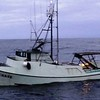 Sea Chase Built 1977 National City Calif  Paul Hawkins  Paul Hawkins Jr  Matthew Forve  Albacore