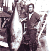 Roy Satow,Bait Fisherman,Tuna Seiner,Western Pacific Area on Jeanette C,