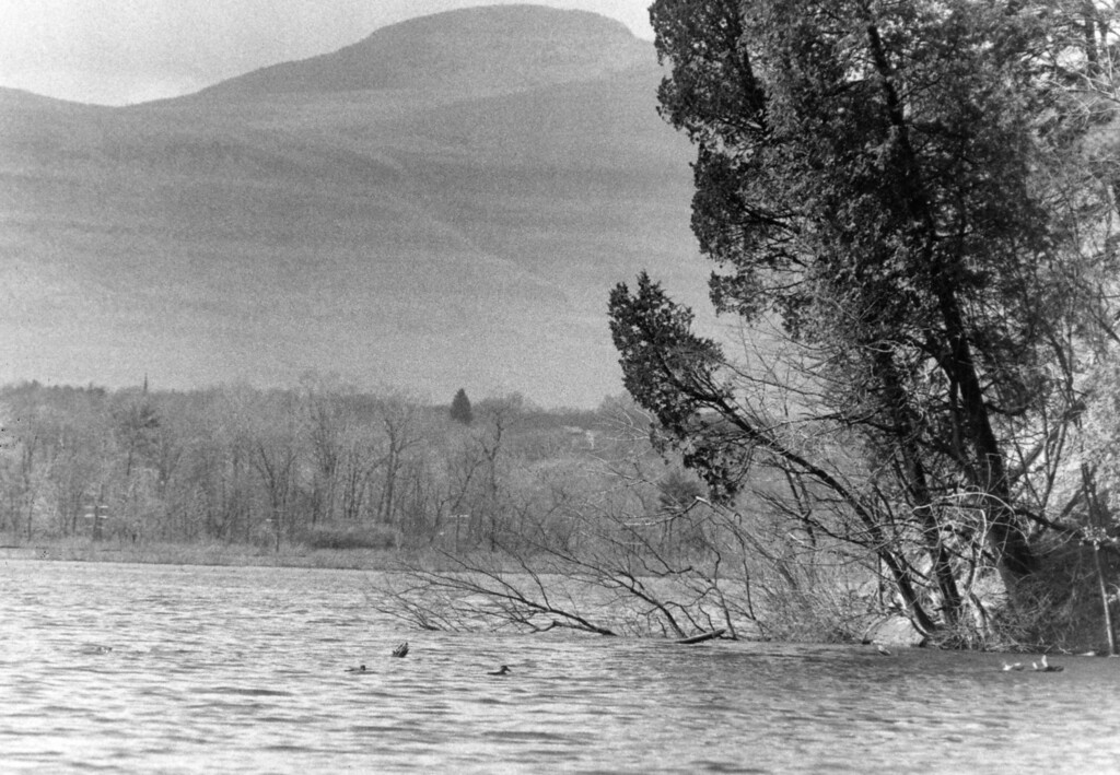 . River edge view from Bard College on April 8, 1986.
