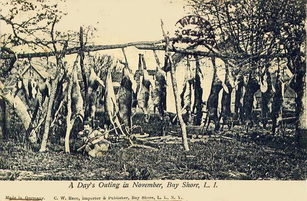 Hunting scene, 1905