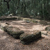 This foundation was likely one of the slave dwellings
