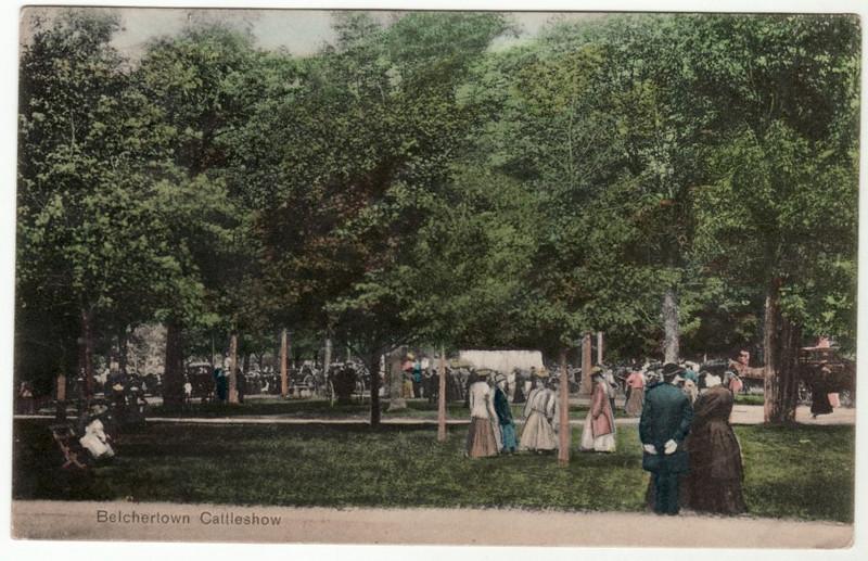 Belchertown Cattle Show 1908