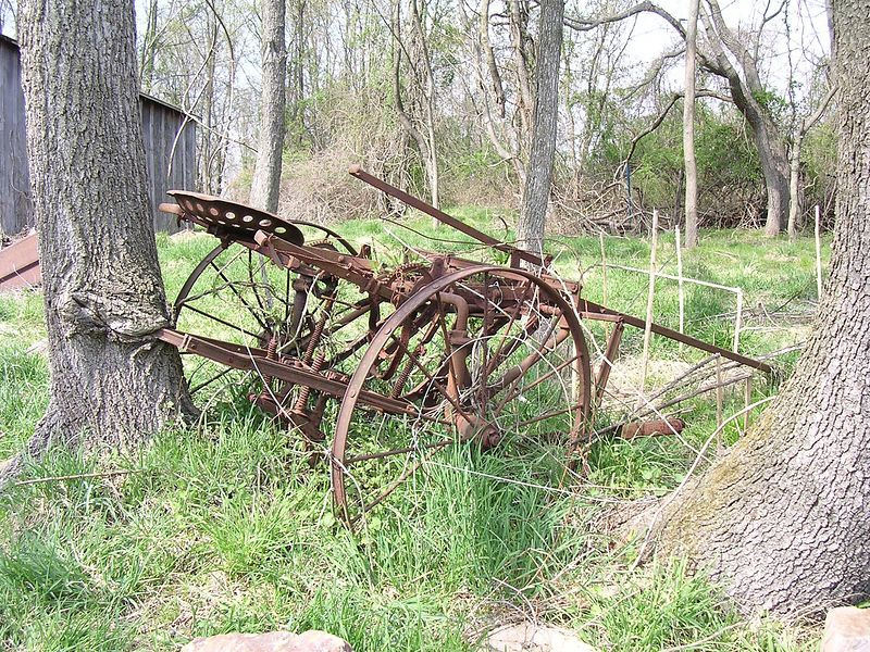 "Part of an old horse-drawn <a href=""http://royal.okanagan.bc.ca/projects/kcm/kcm0734.JPg""> target=""_blank"">sulky plow</a> was left next to a young tree. As the tree got bigger, it began to grow around the rusted metal parts."