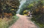Blandford Gore Road