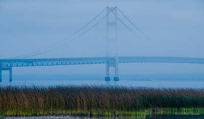Mackinac Bridge North Shore