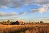 Weld County Homestead