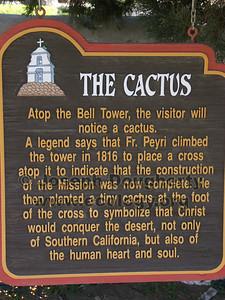 The bell tower cactus at Asistencia San Antonio de Pala.