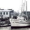 City of San Pedro,Built 1936 Harbor Boat, 1938 Harbor Boat,San Pedro Boy,Nikola Radovich,