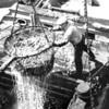 Monterey,Unloading Sardines,Pump Out Inlet,