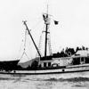 Augusta C,Sea Lion,Built 1935 San Francisco,J G Crivello,