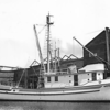 Western Flyer  Gemini  Built and Picture Taken  1937 Tacoma  M A Petrich  Armstrong Fisheries  Dan Luketa  Ole Knudson
