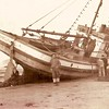 Amelia II  Built 1930 Los Angeles John Falcone Salvatore  Crivello Terry Ketchum  Sam DiMaggio Aground Later Refloated and Fishing