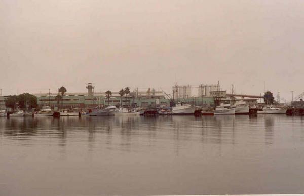 fish_Harbor