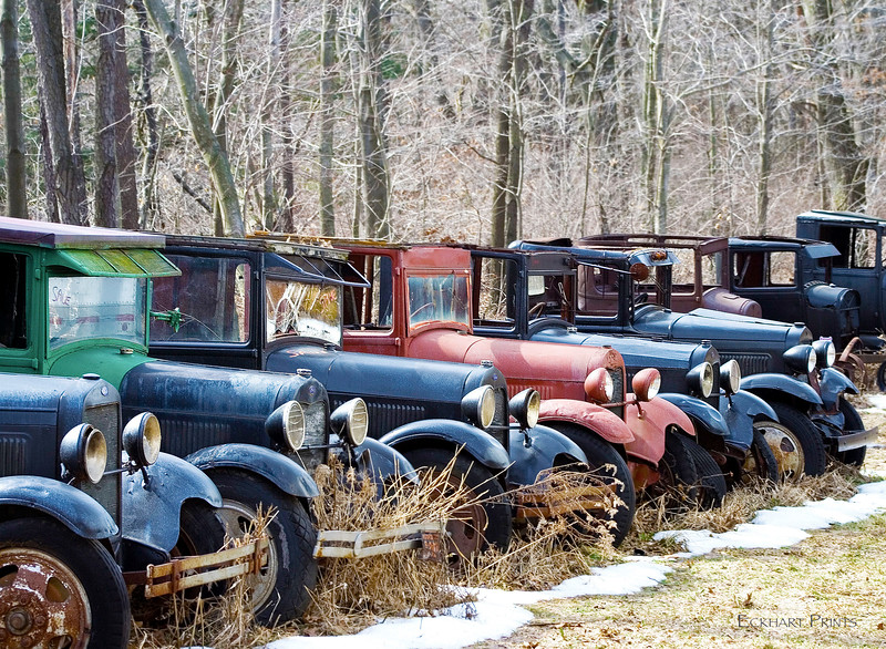 I'm getting old. I relate to these cars that have been put out to pasture. Neglected but I bet they could tell you some stories. I went back to this site a year later and they were all gone. Hopefully, restored and being enjoyed once again. Life should be that way.