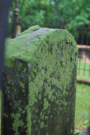 Greenwood Cemetery 2011