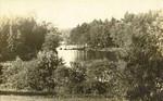 Chesterfield Damon Pond 2