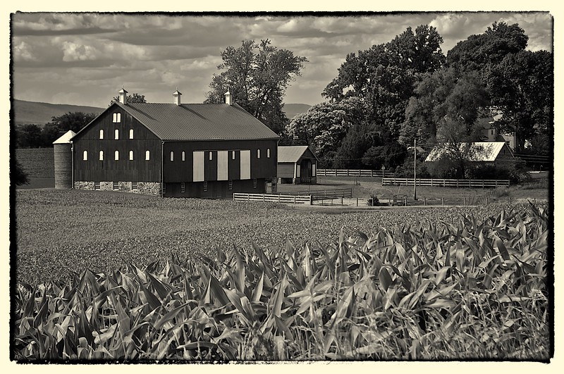 Monocacy  Battlefield Barn, MD