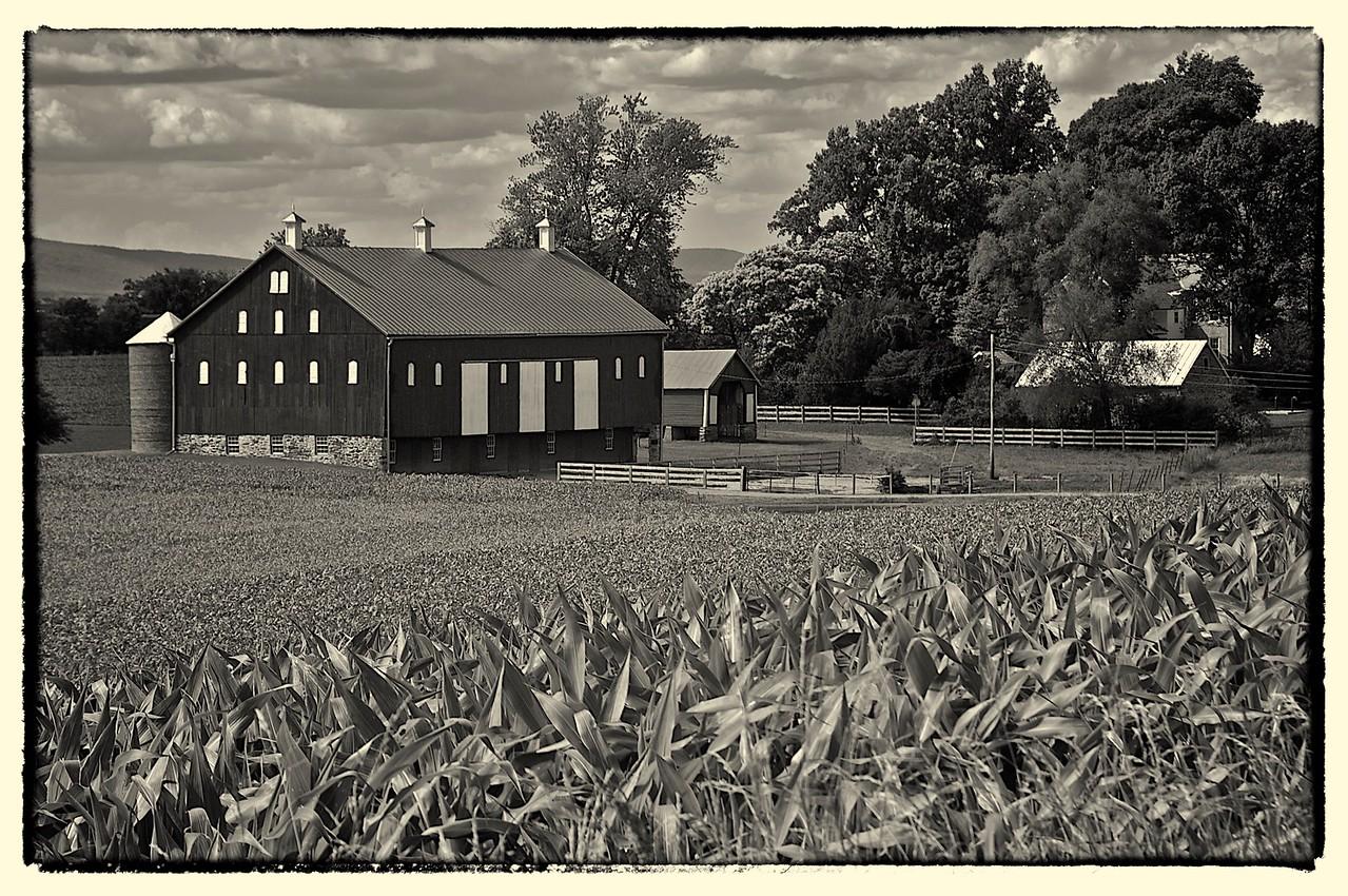 Monocacy  Battlefield Barn, MD