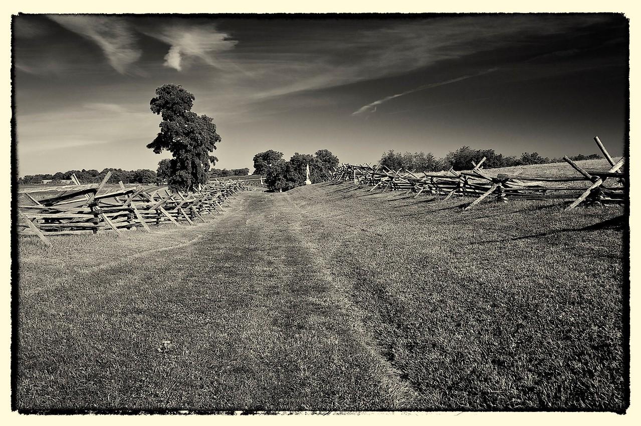 Bloody Lane, Antietam, MD