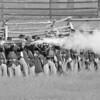 Wasioja Civil War Days 2013 - 96 bw