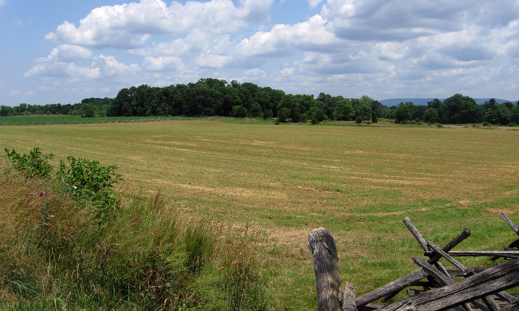 Battle of Antietam (Sharpsburg) - The Corn Field...