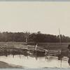 Gettysburg - The Wheatfield (ca. July 1863)