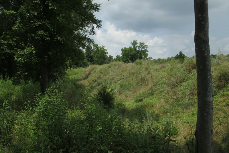 Fortress Rosecrans (ca. 1863-1866) - Dry Ditch