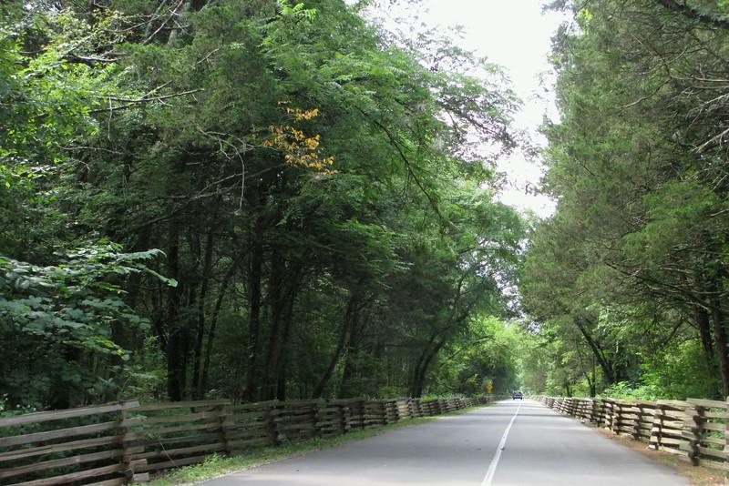 McFadden's Lane