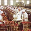 CRPA  Elmore Cannery  Women  Hand Packing   Salmon at Astoria  Oregon  Bumble Bee