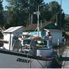 Westport_Boat_Club_57_Belair_Jon_Norgaard_Bill_Gann_OR83CA