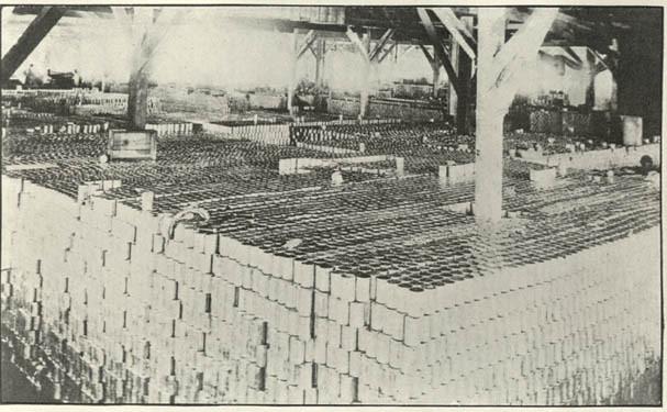 1905_Astoria