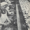 CRPA_1946_Astoria_Canning_Shad_Roe_Elmore