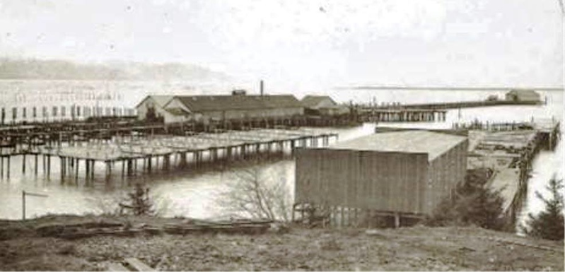Mcgowan Salmon Cannery Washington side below Point Ellis  Columbia River