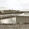 Mcgowan Salmon Cannery Washington side below Point Ellis  Columbia River