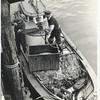 1946_Elmore_Unloading