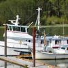 Cape Alitak,Built 1965 Hilstrom Humberg,Jon Norgaard,Willow Grove Marine,