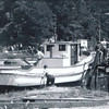Launching Moon GLow at Makelas Boat Shop 1947  Fort Bragg  Eldred Johnson  Joe Perry  Robert  Higgs  John Pedro