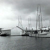 1958_Scarab,Corky Driskell,Bumble_Bee_Shipyard_Astoria_1st_Model_Sternpicker_B_Bay,Garda Marie,Twilight,