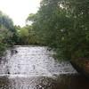Cowpe Brook weir for Bridge End Mill Felt Works 072012 aw