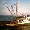 Carl R  Glen C Endurance Built 1958 Terminal Island  Fidalgo Packing  Witney Fidalgo Seafoods  Bear Fisheries John Liddicoat