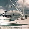 Sea Ern Built 1966 Pacific Fisherman Seattle  Lars Myhre  Westpoint Fisheries