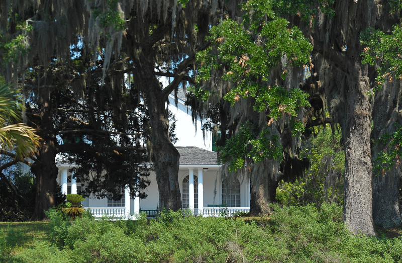 Plum Orchard Area of Cumberland Island Georgia off the Intracoastal Waterway (ICW)  05-18-11