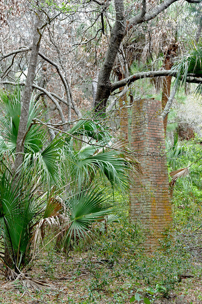 Plum Orchard area on Cumberland Island, Georgia along the Brickhill River 04-05-09 Fallen Down House Ruins within sight of Plum Orchard Mansion - Notice no opening in the chimney from any direction!?
