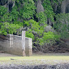 Tabby Boat Ramp at Plum Orchard area on Cumberland Island, Georgia along the Brickhill River 04-05-09