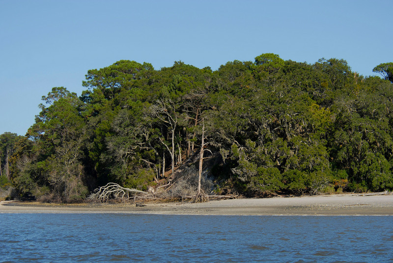 Covered Dunes on Cumberland Island as seen from the Cumberland River ICW in Georgia